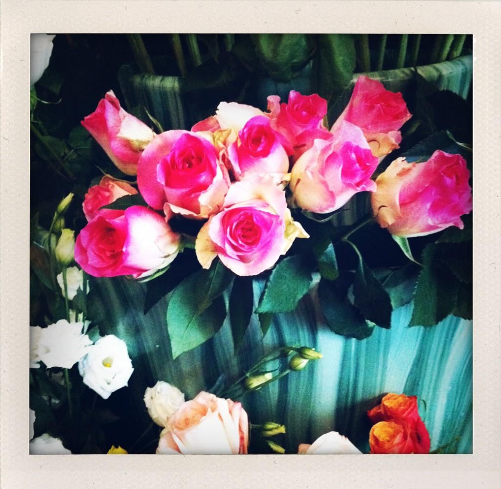 Un fiore per Nastro Rosa