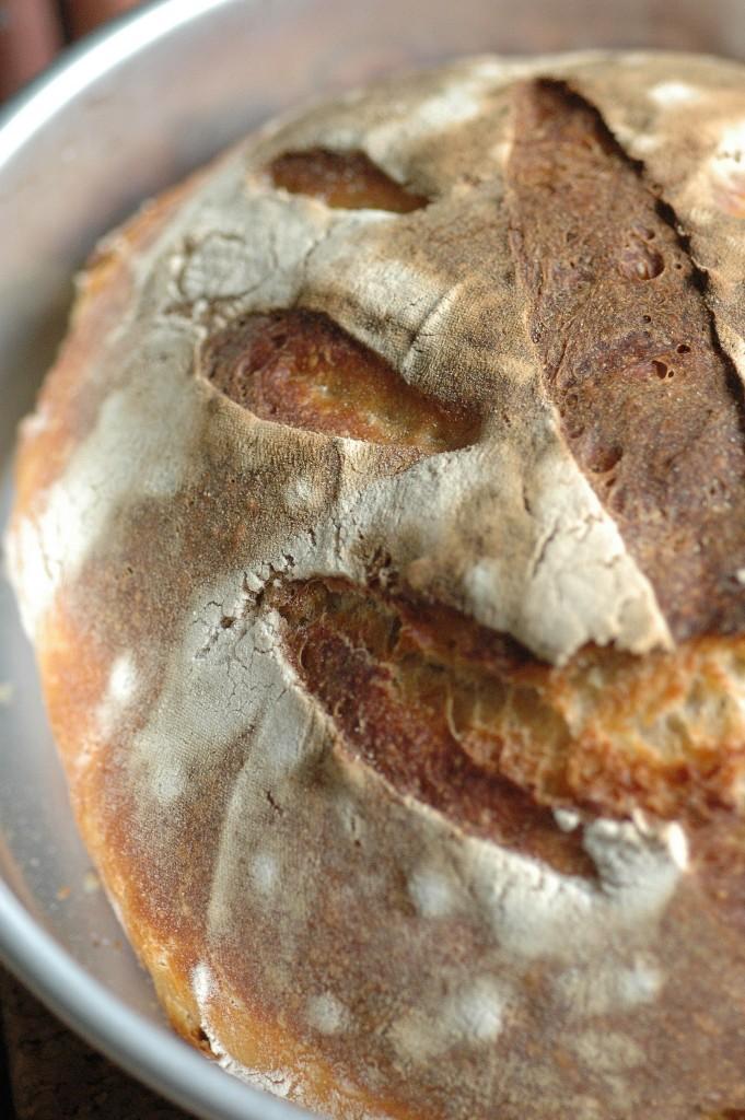 Pane al latticello con lievito madre