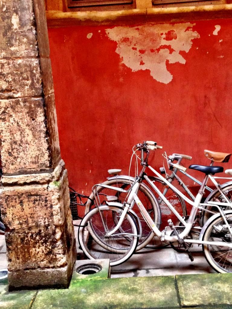 Biciclette a Lyon