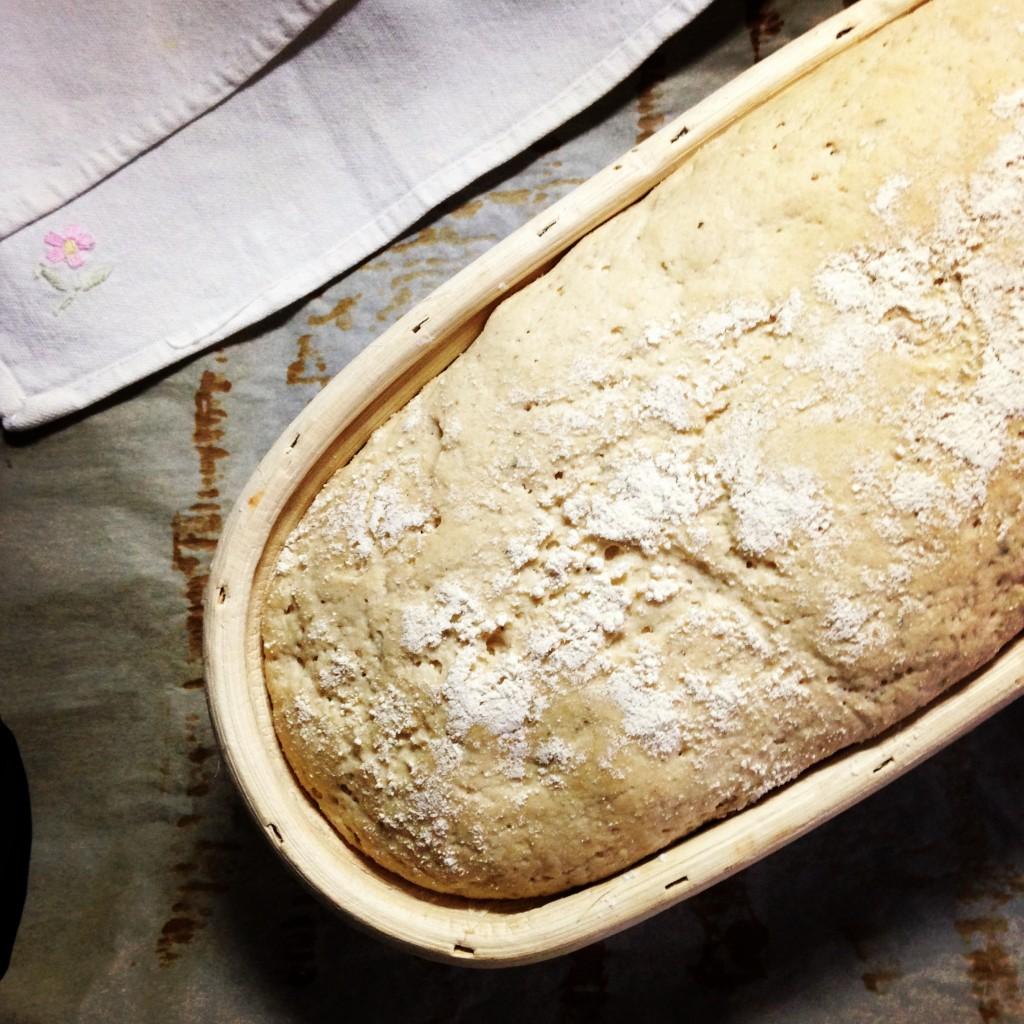 impasto e lievitazione farina Enkir e quinoa
