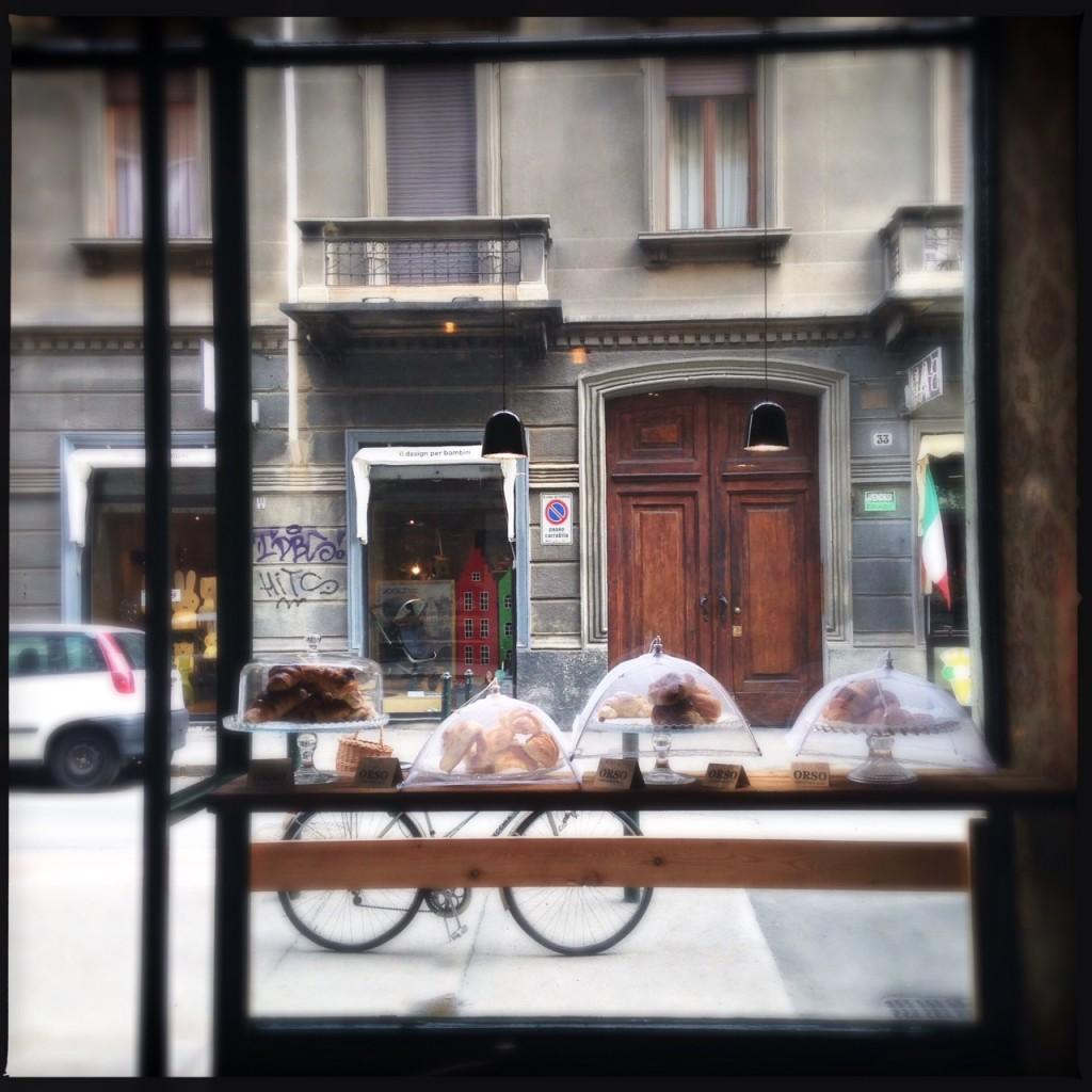 Orso vetrina dolci