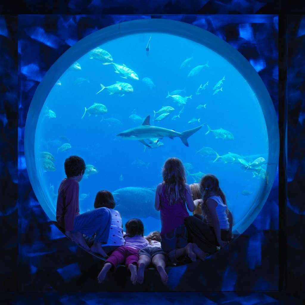 Atlantis, The Palm_ Kids Club