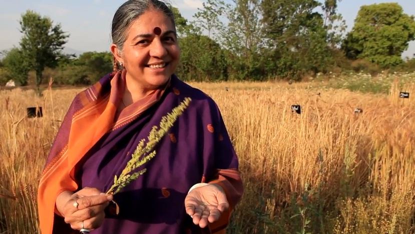 Dr. Vandna Shiva fields